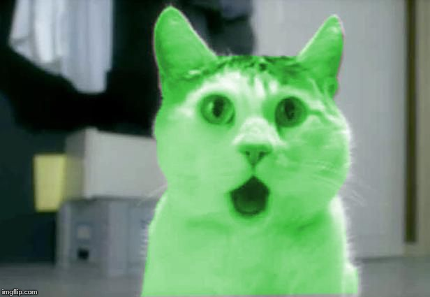 OMG RayCat | . | image tagged in omg raycat | made w/ Imgflip meme maker