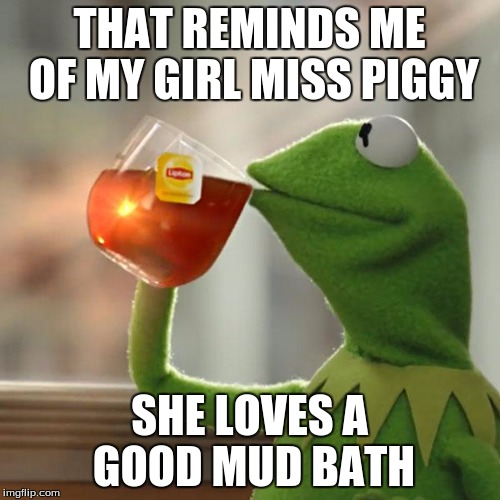 But Thats None Of My Business Meme | THAT REMINDS ME OF MY GIRL MISS PIGGY SHE LOVES A GOOD MUD BATH | image tagged in memes,but thats none of my business,kermit the frog | made w/ Imgflip meme maker