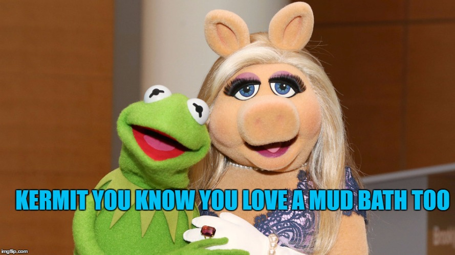 KERMIT YOU KNOW YOU LOVE A MUD BATH TOO | made w/ Imgflip meme maker