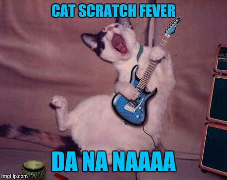 CAT SCRATCH FEVER DA NA NAAAA | made w/ Imgflip meme maker