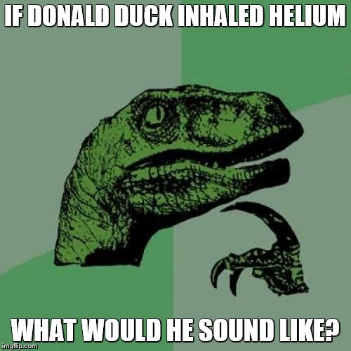 Philosoraptor Meme | IF DONALD DUCK INHALED HELIUM WHAT WOULD HE SOUND LIKE? | image tagged in memes,philosoraptor | made w/ Imgflip meme maker