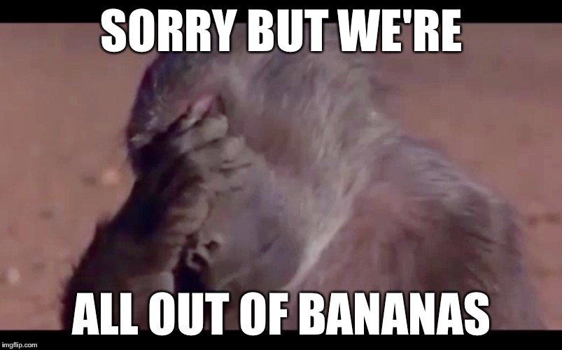 Image Tagged In Monkey Facepalm Imgflip