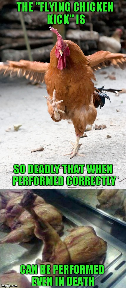 "Gotta respect a bird that fights to the very end... | THE ""FLYING CHICKEN KICK"" IS SO DEADLY THAT WHEN PERFORMED CORRECTLY CAN BE PERFORMED EVEN IN DEATH 