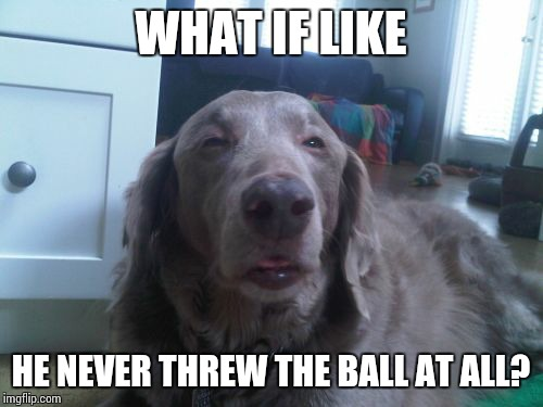 High Dog | WHAT IF LIKE HE NEVER THREW THE BALL AT ALL? | image tagged in memes,high dog | made w/ Imgflip meme maker