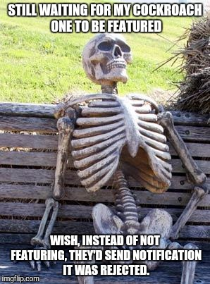 Waiting Skeleton Meme | STILL WAITING FOR MY COCKROACH ONE TO BE FEATURED WISH, INSTEAD OF NOT FEATURING, THEY'D SEND NOTIFICATION IT WAS REJECTED. | image tagged in memes,waiting skeleton | made w/ Imgflip meme maker