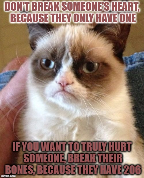 Grumpy Cat Meme | DON'T BREAK SOMEONE'S HEART, BECAUSE THEY ONLY HAVE ONE IF YOU WANT TO TRULY HURT SOMEONE, BREAK THEIR BONES, BECAUSE THEY HAVE 206 | image tagged in memes,grumpy cat | made w/ Imgflip meme maker