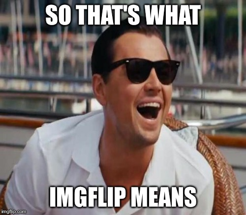 SO THAT'S WHAT IMGFLIP MEANS | made w/ Imgflip meme maker