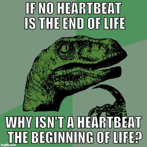 Pliosoraptor must be a man to ask a question like this! | IF NO HEARTBEAT IS THE END OF LIFE WHY ISN'T A HEARTBEAT THE BEGINNING OF LIFE? | image tagged in memes,philosoraptor,abortion,heartbeat,iwanttobebacon | made w/ Imgflip meme maker