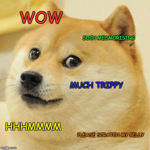 Doge Meme | WOW SUCH MESMORISING MUCH TRIPPY HHHMMMM PLEASE SCRATCH MY BELLY | image tagged in memes,doge | made w/ Imgflip meme maker