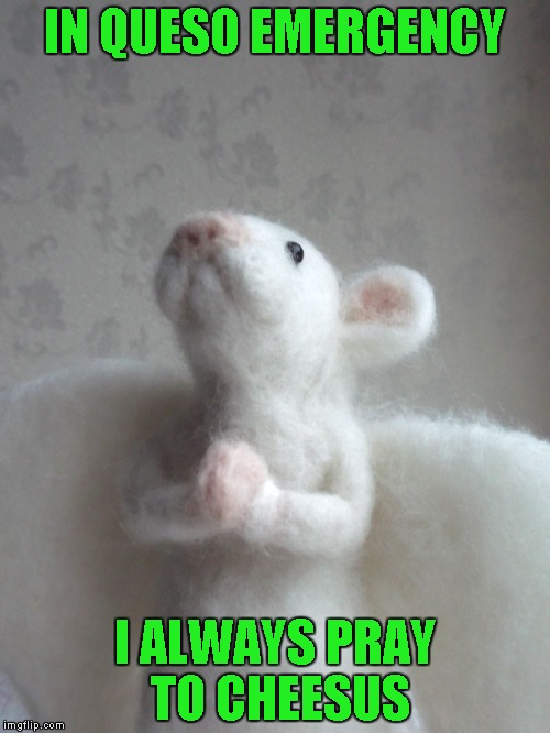 Everybody needs something to believe in... | IN QUESO EMERGENCY I ALWAYS PRAY TO CHEESUS | image tagged in mouse angel,memes,funny animals,animals,mouse,funny | made w/ Imgflip meme maker