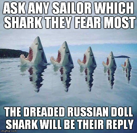 There's another inside! | ASK ANY SAILOR WHICH SHARK THEY FEAR MOST THE DREADED RUSSIAN DOLL SHARK WILL BE THEIR REPLY | image tagged in shark,russian doll,multiply | made w/ Imgflip meme maker