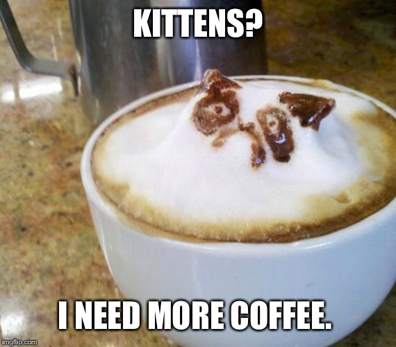KITTENS? I NEED MORE COFFEE. | made w/ Imgflip meme maker