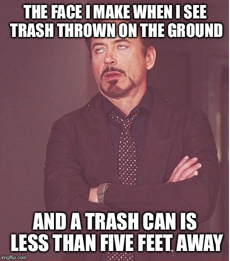 Come on lazy asses! | THE FACE I MAKE WHEN I SEE TRASH THROWN ON THE GROUND AND A TRASH CAN IS LESS THAN FIVE FEET AWAY | image tagged in memes,face you make robert downey jr | made w/ Imgflip meme maker