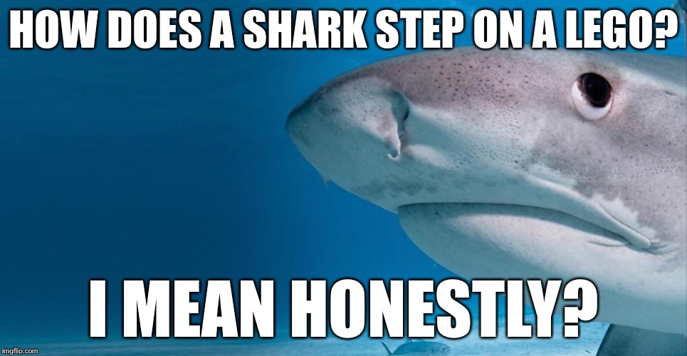 Shark |  HOW DOES A SHARK STEP ON A LEGO? I MEAN HONESTLY? | image tagged in shark,memes,austin powers honestly,shark_head_out_of_water | made w/ Imgflip meme maker