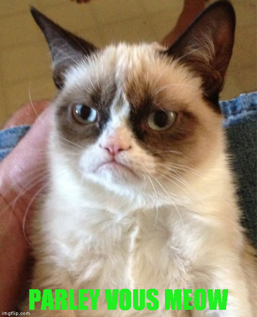 Grumpy Cat Meme | PARLEY VOUS MEOW | image tagged in memes,grumpy cat | made w/ Imgflip meme maker
