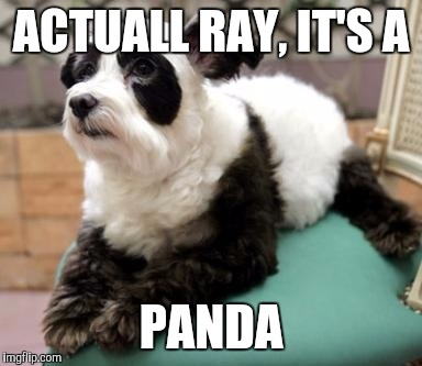 ACTUALL RAY, IT'S A PANDA | made w/ Imgflip meme maker