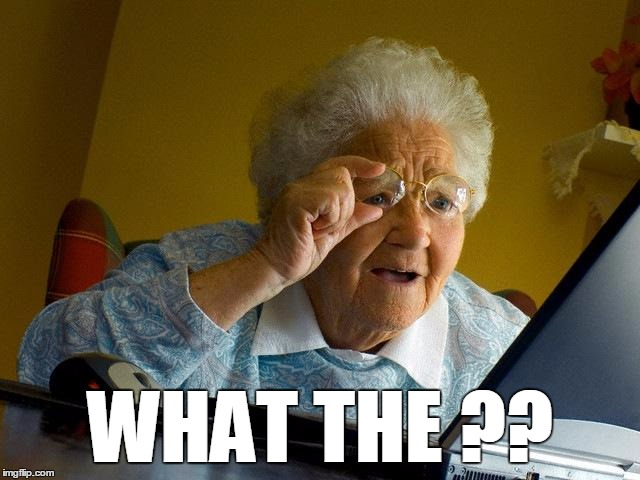 Grandma Finds The Internet Meme | WHAT THE ?? | image tagged in memes,grandma finds the internet | made w/ Imgflip meme maker