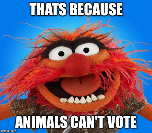 THATS BECAUSE ANIMALS CAN'T VOTE | made w/ Imgflip meme maker