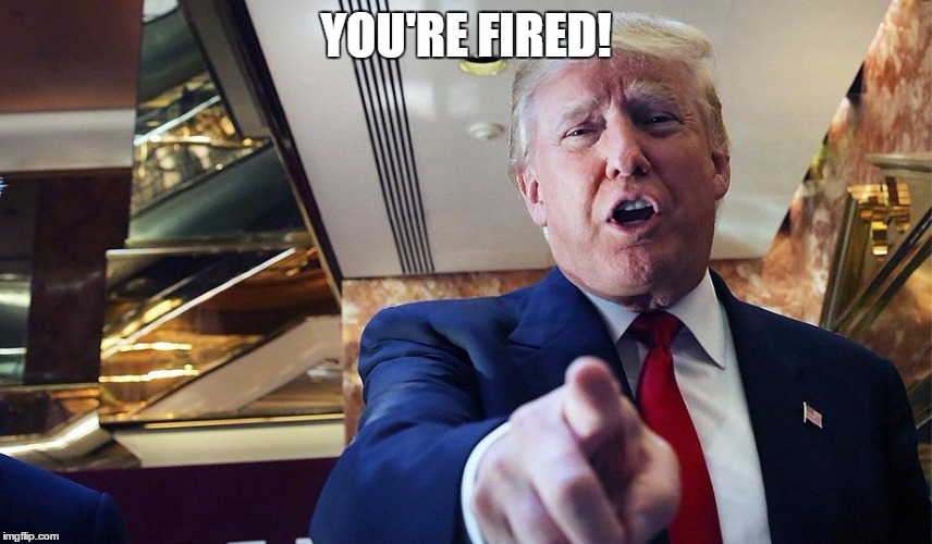Trump Burn | YOU'RE FIRED! | image tagged in trump burn | made w/ Imgflip meme maker