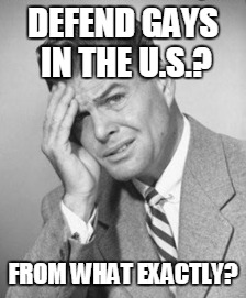 DEFEND GAYS IN THE U.S.? FROM WHAT EXACTLY? | made w/ Imgflip meme maker