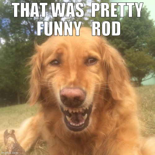 THAT WAS  PRETTY FUNNY   ROD | made w/ Imgflip meme maker