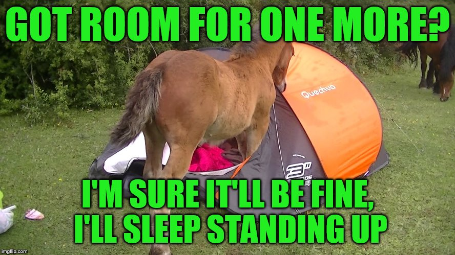 GOT ROOM FOR ONE MORE? I'M SURE IT'LL BE FINE, I'LL SLEEP STANDING UP | made w/ Imgflip meme maker