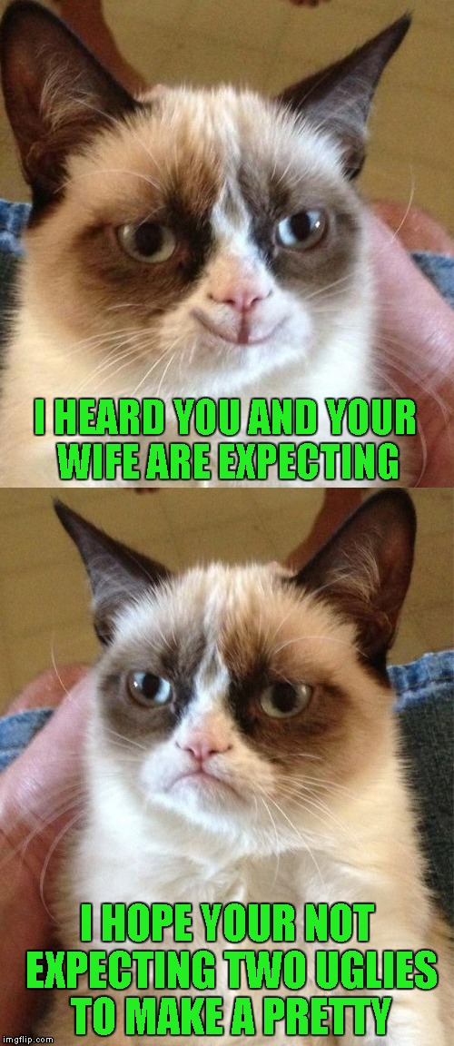 Grumpy Cat | I HEARD YOU AND YOUR WIFE ARE EXPECTING I HOPE YOUR NOT EXPECTING TWO UGLIES TO MAKE A PRETTY | image tagged in grumpy cat,memes,funny | made w/ Imgflip meme maker