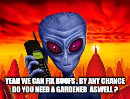 YEAH WE CAN FIX ROOFS . BY ANY CHANCE DO YOU NEED A GARDENER  ASWELL ? | made w/ Imgflip meme maker