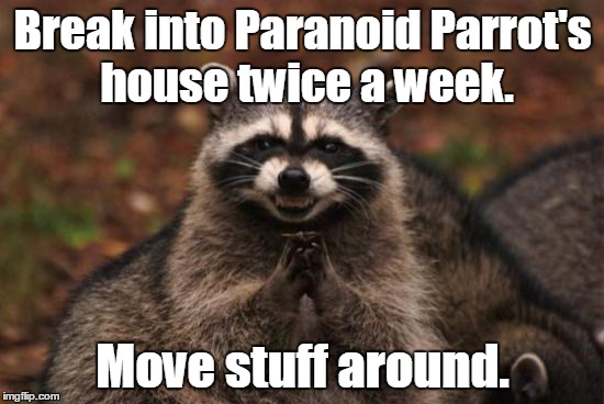 Evil racoon |  Break into Paranoid Parrot's house twice a week. Move stuff around. | image tagged in evil racoon | made w/ Imgflip meme maker