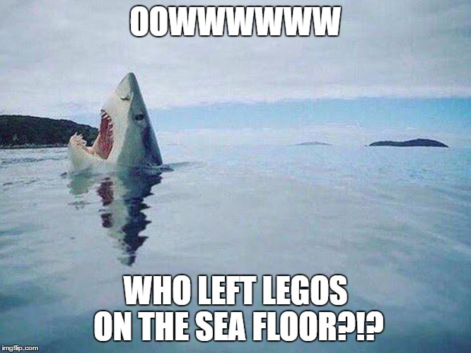Shark Steps on Lego | OOWWWWWW WHO LEFT LEGOS ON THE SEA FLOOR?!? | image tagged in shark steps on lego | made w/ Imgflip meme maker
