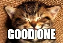 Kitty smile  | GOOD ONE | image tagged in kitty smile | made w/ Imgflip meme maker