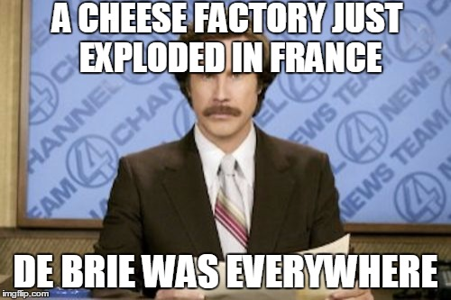 Thankfully, the cleanup went Gouda for the workers. | A CHEESE FACTORY JUST EXPLODED IN FRANCE DE BRIE WAS EVERYWHERE | image tagged in memes,ron burgundy,cheese,france,explosion,puns | made w/ Imgflip meme maker