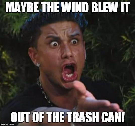 MAYBE THE WIND BLEW IT OUT OF THE TRASH CAN! | made w/ Imgflip meme maker