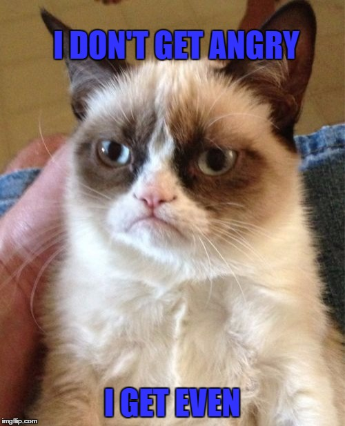 Grumpy Cat Meme | I DON'T GET ANGRY I GET EVEN | image tagged in memes,grumpy cat | made w/ Imgflip meme maker