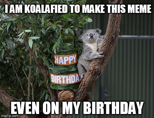 Another year of my life on imgflip | I AM KOALAFIED TO MAKE THIS MEME EVEN ON MY BIRTHDAY | image tagged in koala b-day,birthday,koala,memes | made w/ Imgflip meme maker