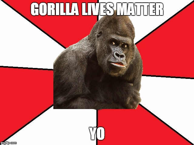 Bad advice Hillary | GORILLA LIVES MATTER YO | image tagged in bad advice hillary | made w/ Imgflip meme maker