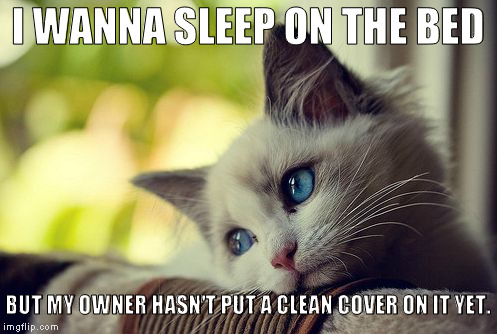 First World Problems Cat |  I WANNA SLEEP ON THE BED; BUT MY OWNER HASN'T PUT A CLEAN COVER ON IT YET. | image tagged in memes,first world problems cat | made w/ Imgflip meme maker