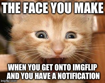 I leap for joy | THE FACE YOU MAKE WHEN YOU GET ONTO IMGFLIP AND YOU HAVE A NOTIFICATION | image tagged in memes,excited cat | made w/ Imgflip meme maker