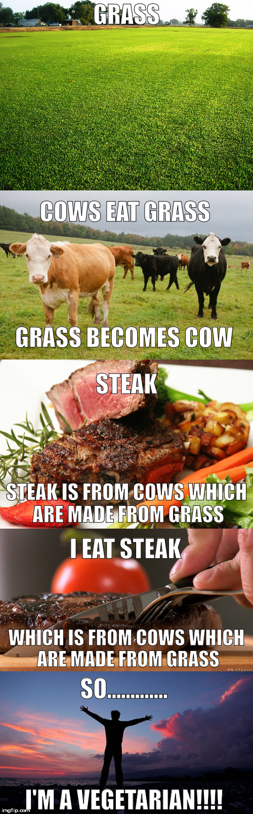 Yummy Logic | GRASS COWS EAT GRASS GRASS BECOMES COW STEAK STEAK IS FROM COWS WHICH ARE MADE FROM GRASS I EAT STEAK WHICH IS FROM COWS WHICH ARE MADE FROM | image tagged in cow,steak,vegetarians | made w/ Imgflip meme maker