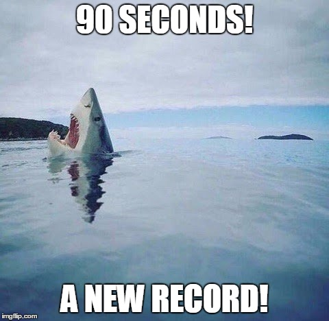 shark_head_out_of_water | 90 SECONDS! A NEW RECORD! | image tagged in ocean,shark,swimming,swim,record,funny | made w/ Imgflip meme maker
