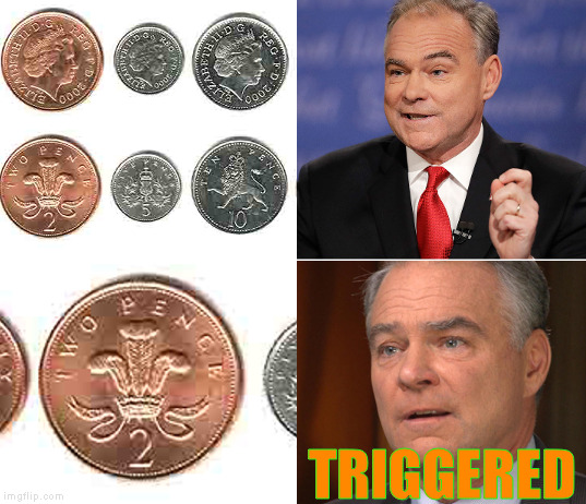 Tim Kaine Triggered | TRIGGERED | image tagged in funny memes,tim kaine,trump  pence,triggered | made w/ Imgflip meme maker