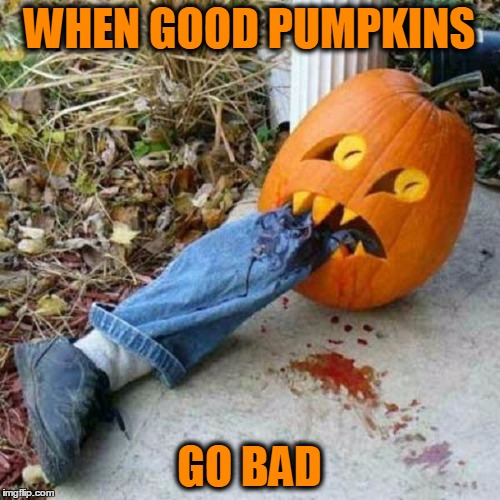 Halloween Ha-ha's | WHEN GOOD PUMPKINS GO BAD | image tagged in meme,halloween,pumpkins,jack-o-lanterns,funny | made w/ Imgflip meme maker