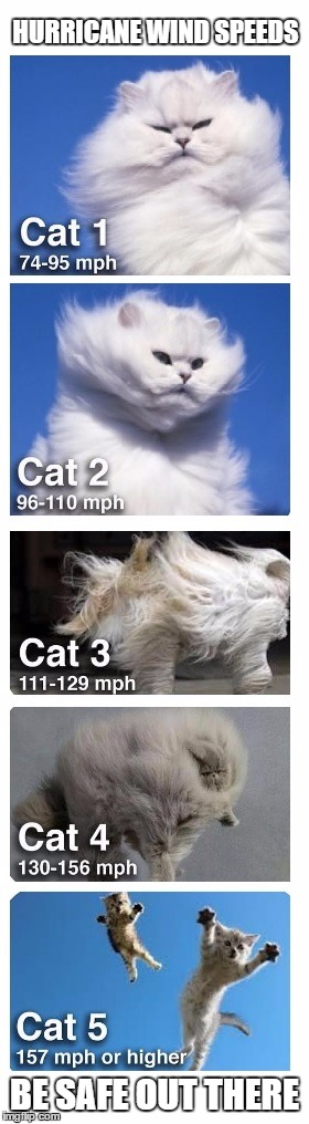 Saffir-Simpson Cat Wind speeds | HURRICANE WIND SPEEDS BE SAFE OUT THERE | image tagged in hurricane matthew,cat,winds,blown away | made w/ Imgflip meme maker