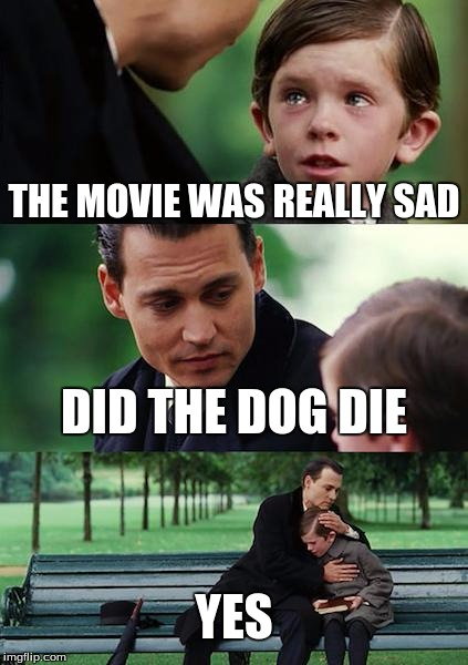 Finding Neverland Meme   THE MOVIE WAS REALLY SAD DID THE DOG DIE YES ... Yes Really Meme