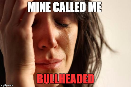 MINE CALLED ME BULLHEADED | image tagged in memes,first world problems | made w/ Imgflip meme maker