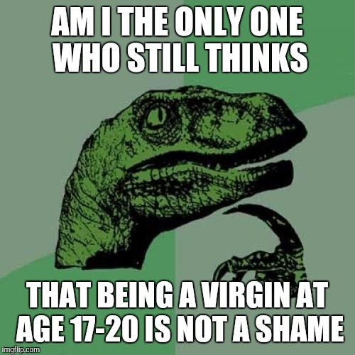 Philosoraptor Meme | AM I THE ONLY ONE WHO STILL THINKS THAT BEING A VIRGIN AT AGE 17-20 IS NOT A SHAME | image tagged in memes,philosoraptor | made w/ Imgflip meme maker