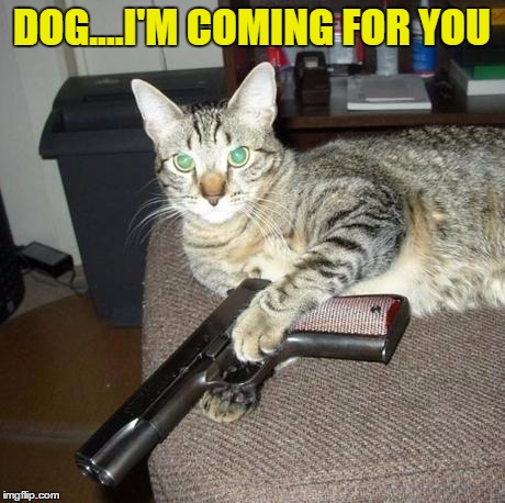 DOG....I'M COMING FOR YOU | made w/ Imgflip meme maker