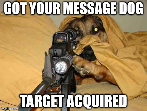 Sniper Dog | GOT YOUR MESSAGE DOG TARGET ACQUIRED | image tagged in sniper dog | made w/ Imgflip meme maker