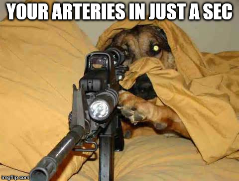 Sniper Dog | YOUR ARTERIES IN JUST A SEC | image tagged in sniper dog | made w/ Imgflip meme maker