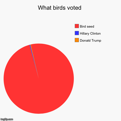 What birds voted | Donald Trump, Hillary Clinton, Bird seed | image tagged in funny,pie charts | made w/ Imgflip pie chart maker
